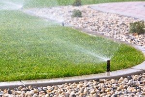 sprinkler watering system misting grass Perth
