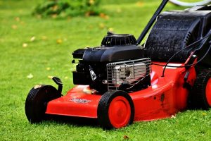 red lawn mower Perth gardening