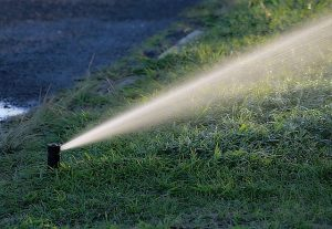 directional sprinkler reticulation watering system Perth